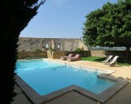 VAUCLUSE Superb restored 16th century village house, a garden and a pool